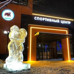"""Спортивный центр """"ОШПИ"""""""